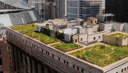cobertura verde em chicago l imagem: wikipedia