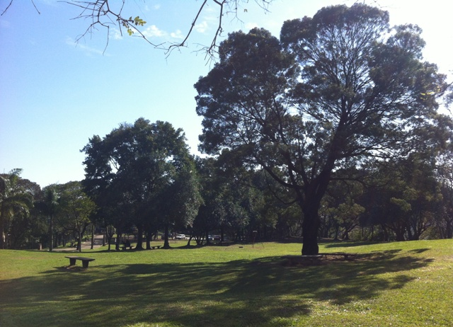 áreas verdes com muito espaço de lazer em família