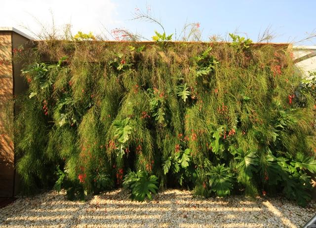 muro verde em cobertura residencial | imagem: léo barrilari